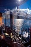 steam;ship;ships;steamships;steam-ship;steam-ships;steamship;steamer;steamers;mountain;mountains;lakes;lake;boat;boats;tourists;tourist;tourism;tourist-attraction;tourist-attractions;earnslaw;tss-earnslaw;t.s.s.-earnslaw;queenstown;wakatipu;lake-wakatipu;south-island;new-zealand;reflection;reflections;window;windows;sunlight