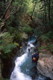 Routeburn-Track;routeburn;great-walk;Mt-Aspiring-National-Park;south-island;new-zealand;forest;forests;bush;rainforest;rainforests;native;vegetation;green;lush;verdant;moss;fern;ferns;mosses;tree;trees;natural;clean-green;clean;river;rivers;clear;transparent;pure;water;doc;department-of-conservation;d.o.c.;gorge;gorges;ravine;ravines;canyon;canyons;canyoners;canyoneers;canyoner;canyoneer;canyoning;adventure;adventure-tourism;adrenaline;exciting;excite;outdoor;outdoors;outside;recreation;recreational;rapid;rapids;white-water;whitewater