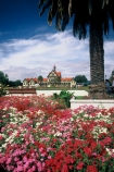 flower;flowers;garden;red;pink;white;palm;tree;trees;palms;tourism;historic;historical;museum;art;gallery;history