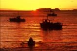colour;colours;color;colors;orange;dawn;mist;fog;foggy;boat;island;bays;islands;ocean;sea;pacific;dinghy;dinghies;oar;oars;row;rowing;bird;birds;seagull;seagulls