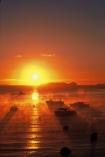 colour;colours;color;colors;orange;dawn;mist;fog;foggy;boat;island;bays;islands;ocean;sea;pacific;sun;reflection;water