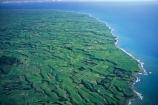 agriculture;cow;cows;dairy;farm;farms;fence;fenceline;fences;field;fields;grass;green;hedgerow;hedgerows;lamb;lambs;lush;meadow;meadows;ocean;paddock;paddocks;pasture;pastures;plain;plains;run-off;run_off;rural;sea;sheep;spring;tasman-sea;verdant