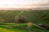 agricultural;agriculture;country;countryside;farm;farming;farmland;farms;field;fields;meadow;meadows;N.I.;N.Z.;New-Zealand;NI;North-Island;NZ;paddock;paddocks;pasture;pastures;rural;Wanganui;Wanganui-Region