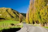 agricultural;agriculture;autuminal;autumn;autumn-colour;autumn-colours;autumnal;color;colors;colour;colours;country;countryside;deciduous;driving;fall;farm;farming;farmland;farms;field;fields;highway;highways;leaf;leaves;meadow;meadows;N.I.;N.Z.;New-Zealand;NI;North-Island;NZ;open-road;open-roads;paddock;paddocks;pasture;pastures;poplar;poplar-tree;poplar-trees;poplars;road;road-trip;roads;rural;season;seasonal;seasons;State-Highway-4;State-highway-Four;transport;transportation;travel;traveling;travelling;tree;trees;trip;Wanganui;Wanganui-_-Raetihi-Road;Wanganui-Region
