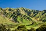 agricultural;agriculture;country;countryside;farm;farming;farmland;farms;field;fields;Mangawhero-Valley;meadow;meadows;N.I.;N.Z.;New-Zealand;NI;North-Island;NZ;paddock;paddocks;pasture;pastures;rural;Wanganui;Wanganui-Region