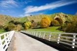 agricultural;agriculture;autuminal;autumn;autumn-colour;autumn-colours;autumnal;bridge;bridges;color;colors;colour;colours;country;countryside;deciduous;fall;farm;farming;farmland;farms;field;fields;Kakatahi;leaf;leaves;meadow;meadows;N.I.;N.Z.;New-Zealand;NI;North-Island;NZ;paddock;paddocks;pasture;pastures;rural;season;seasonal;seasons;State-Highway-4;tree;trees;Wanganui;Wanganui-_-Raetihi-Road;Wanganui-Region