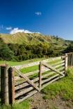 agricultural;agriculture;autuminal;autumn;autumn-colour;autumn-colours;autumnal;color;colors;colour;colours;country;countryside;deciduous;fall;farm;farming;farmland;farms;fence;fence-line;fence-lines;fence_line;fence_lines;fenceline;fencelines;fences;field;fields;gate;gates;gateway;gateways;leaf;leaves;meadow;meadows;N.I.;N.Z.;New-Zealand;NI;North-Island;NZ;paddock;paddocks;pasture;pastures;rural;season;seasonal;seasons;State-Highway-4;tree;trees;Wanganui;Wanganui-_-Raetihi-Road;Wanganui-Region