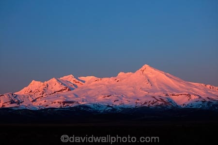alpenglo;alpenglow;alpine;alpinglo;alpinglow;break-of-day;Central-North-Island;central-plateau;color;colors;colour;colours;dawn;dawning;daybreak;first-light;island;morning;Mount-Ruapehu;mountain;mountainous;mountains;mt;Mt-Ruapehu;mt.;Mt.-Ruapehu;N.I.;N.Z.;National-Park;national-parks;new;new-zealand;NI;north;North-Is;North-Island;NP;Nth-Is;NZ;orange;pink;ruapehu-district;snow;sunrise;sunrises;sunup;Tongariro-N.P.;Tongariro-National-Park;Tongariro-NP;twilight;volcanic;volcanic-plateau;volcano;volcanoes;w3a9514;World-Heritage-Area;World-Heritage-Areas;World-Heritage-Site;World-Heritage-Sites;zealand
