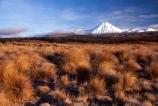 cone;mountain;mountains;peak;peaks;snow;snow-cap;snow-capped;snow-caps;snow_cap;snow_capped;tussock;tussocks;volcanic;volcano