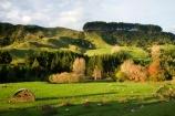 agricultural;agriculture;autuminal;autumn;autumn-colour;autumn-colours;autumnal;color;colors;colour;colours;country;countryside;deciduous;fall;farm;farming;farmland;farms;field;fields;green;hay;hay-barn;hay-barns;hay-shed;hay-sheds;hay-stack;hay-stacks;haystack;haystacks;King-Country;leaf;leaves;Mapara-Stream;meadow;meadows;N.I.;N.Z.;New-Zealand;NI;North-Island;NZ;paddock;paddocks;pasture;pastures;rural;season;seasonal;seasons;sheep;Te-Kuiti;tree;trees;Waikato-Region