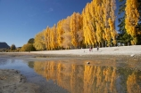 autuminal;autumn;autumn-colour;autumn-colours;autumnal;calm;Central-Otago;color;colors;colour;colours;deciduous;fall;families;family;golden;lake;Lake-Wanaka;lakes;leaf;leaves;N.Z.;New-Zealand;NZ;Otago;people;person;persons;placid;poplar;poplar-tree;poplar-trees;poplars;quiet;reflection;reflections;S.I.;season;seasonal;seasons;serene;SI;smooth;South-Is.;South-Island;Southern-Lakes;Southern-Lakes-District;Southern-Lakes-Region;still;tranquil;tree;trees;Wanaka;water;yellow