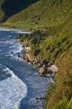12-Mile-Bluff;beach;beaches;beautiful;beauty;bush;coast;coastal;coastline;coastlines;coasts;endemic;forest;forests;green;Greigs;N.Z.;native;native-bush;natives;natural;nature;New-Zealand;NZ;ocean;oceans;rain-forest;rain-forests;rain_forest;rain_forests;rainforest;rainforests;S.I.;sand;sandy;scene;scenic;sea;seas;shore;shoreline;shorelines;shores;SI;South-Island;State-Highway-6;State-Highway-Six;surf;Tasman-Sea;tree;trees;Twelve-Mile-Bluff;water;wave;waves;West-Coast;Westland