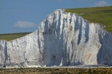 beach;beaches;Birling-Gap;Birling-Gap-Beach;bluff;bluffs;Britain;British-Isles;chalk-cliff;chalk-cliffs;chalk-downland;chalk-downlands;chalk-downs;chalk-formation;chalk-formations;chalk-headland;chalk-headlands;chalk-layer;chalk-layers;cliff;cliffs;coast;coastal;coastline;coastlines;coasts;Cretaceous-chalk-layer;down;downland;downlands;downs;East-Sussex;England;English;English-Chanel;eroded;erosion;Europe;foreshore;formation;formations;G.B.;GB;geological;geological-formation;geological-formations;geology;Great-Britain;image;images;layer;layering;layers;limestone;natural;natural-landscape;natural-landscapes;photo;photos;rock-formation;rock-formations;S.E.-England;SE-England;sedimentary-layer;sedimentary-layers;Seven-Sisters;Seven-Sisters-Cliffs;Seven-Sisters-Country-Park;shore;shoreline;South-Downs;South-Downs-N.P.;South-Downs-National-Park;South-Downs-NP;South-East-England;Southern-England;steep;stone;strata;stratum;Sussex;The-Seven-Sisters;U.K.;UK;United-Kingdom;unusual-natural-feature;unusual-natural-features;unusual-natural-formation;unusual-natural-formations;white-chalk-cliff;white-chalk-cliffs;White-Cliff;white-cliffs;channel;