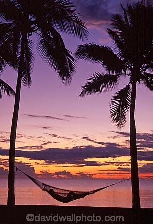 alone;beach;beaches;calm;calmness;coast;coastline;coconut-palm;coconut-palms;coconut-tree;coconut-trees;cocos-nucifera;denarau-island;dusk;hammock;hammocks;heavenly;holiday;holidays;horizon;horizons;idyllic;island;islands;leisure;melanesia;ocean;one-person;outdoor;outdoors;outside;pacific;palm;palm-tree;palm-trees;palms;paradise;peaceful;plant;plants;quiet;relax;relaxation;relaxing;rest;restful;sand;sandy;scenic;scenics;sea;serene;sheraton-hotel;sheraton-hotels;sheraton-resort;sheraton-resorts;shore;shoreline;shores;silence;silhouette;single;sky;sleep;still;summer;summertime;sunset;sunsets;tranquil;travel;travels;tree;trees;tropical;vacation;vacations;vegetation;viti-levu;water;world-locations;world-travel