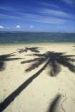 beach;beaches;coast;coastline;coconut-palm;coconut-palms;coconut-tree;coconut-trees;cocos-nucifera;heavenly;holiday;holidays;horizon;horizons;idyllic;island;islands;leisure;melanesia;ocean;outdoor;outdoors;outside;pacific;palm;palm-tree;palms;palm-trees;paradise;plant;plants;sand;sandy;scenic;scenics;sea;shadow;shadows;shore;shores;shoreline;summer;summertime;travel;travels;tree;trees;tropical;vacation;vacations;vegetation;viti-levu;water;world-locations;world-travel;relax;relaxing;serene;peaceful;quiet;restful;rest;calm;tranquil;still;south-pacific
