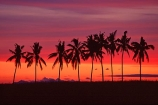 calm;calmness;coconut-palm;coconut-palms;coconut-tree;coconut-trees;cocos-nucifera;dusk;heavenly;holiday;holidays;horizon;horizons;idyllic;island;islands;leisure;melanesia;outdoor;outdoors;outside;pacific;palm;palm-tree;palm-trees;palms;paradise;peaceful;plant;plants;quiet;relax;relaxation;relaxing;rest;restful;scenic;scenics;serene;silence;sky;still;summer;summertime;sunset;sunsets;tranquil;travel;travels;tree;trees;tropical;vacation;vacations;vegetation;viti-levu;world-locations;world-travel
