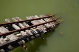 1994-cyclone;1994-hurricane;1994-typhoon;bridge;bridges;Coral-Coast;Fij;Fiji;Fiji-Islands;Pacific;rail;rail-bridge;rail-bridges;rails;railway;railway-bridge;railway-bridges;railways;road-rail-bridge;road-rail-bridges;road_rail-bridge;road_rail-bridges;Sigatoka;Sigatoka-River;South-Pacific;sugar-cane-railway;sugarcane-railway;Viti-Levu