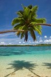 aqua;aquamarine;blue;clean-water;clear-water;coast;coastal;coastline;coastlines;cobalt-blue;cobalt-ultramarine;cobaltultramarine;coconut-palm;coconut-palm-tree;coconut-palm-trees;coconut-palms;coconut-tree;coconut-trees;cocos-nucifera;Coral-Coast;Cuvu-Harbour;Fij;Fiji;Fiji-Islands;Fijian-Resort-and-Spa;holiday;holiday-resort;holiday-resorts;holidays;idyllic;Pacific;Pacific-Island;Pacific-Islands;palm;palm-tree;palm-trees;palms;paradise;resort;resort-hotel;resort-hotels;resorts;sea;Shangri_La-Fijian-Resort;Shangri_La-Fijian-Resort-and-Spa;Shangri_La-Resort;Shangri_Las-Fijian-Resort;Shangri_Las-Fijian-Resort-and-Spa-Yanuca-Island;Shangri_Las-Resort;shore;shoreline;shorelines;shores;South-Pacific;teal-blue;tropical-island;tropical-islands;turquoise;vacation;vacations;Viti-Levu;Yanuca-Island