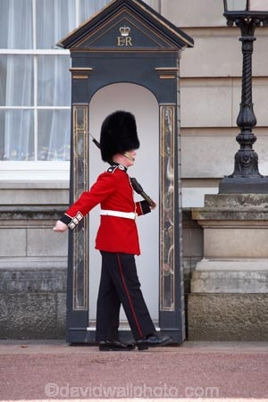 queens guard buckingham palace london england united kingdom
