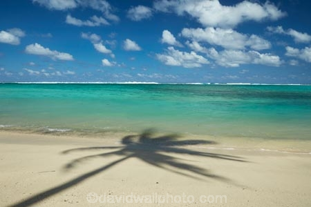 aquamarine;beach;beaches;blue;blue-skies;blue-sky;clean-water;clear-water;cloud;clouds;coconut-palm;coconut-palms;Cook-Is;Cook-Islands;Pacific;Pacific-Ocean;palm;palm-tree;palm-trees;palms;paradise;Rarotonga;shadow;shadows;simple;South-Pacific;tropcial-water;tropical;tropical-beach;tropical-island;tropical-islands;tropical-palm-tree;turquoise;water-aqua;white-cloud;white-clouds
