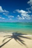 aquamarine;beach;beaches;blue;blue-skies;blue-sky;clean-water;clear-water;cloud;clouds;cobalt-blue;cobalt-ultramarine;cobaltultramarine;coconut-palm;coconut-palms;Cook-Is;Cook-Islands;Pacific;Pacific-Ocean;palm;palm-tree;palm-trees;palms;paradise;Rarotonga;shadow;shadows;simple;South-Pacific;tropcial-water;tropical;tropical-beach;tropical-island;tropical-islands;tropical-palm-tree;turquoise;water-aqua;white-cloud;white-clouds