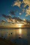 Avarua;beach;beaches;Black-Rock;coast;coastline;coastlines;Cook-Is;Cook-Islands;dusk;evening;night;night_time;nightfall;Pacific;Pacific-Ocean;Rarotonga;rock;rocks;South-Pacific;Sunset;sunsets;tropical;tropical-island;tropical-islands;Tuoro;twilight