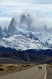 animal;animals;Argentina;Argentine-Patagonia;Argentine-Republic;Cerro-Chaltén;Cerro-Fitz-Roy;El-Chalten;Glacier-National-Park;guanaco;guanacos;lama;Lama-guanicoe;lamas;Latin-America;Los-Glaciares;Los-Glaciares-N.P.;Los-Glaciares-National-Park;Los-Glaciares-NP;Monte-Fitz-Roy;Mount-Fitz-Roy;Mount-Fitzroy;Mt-Fitz-Roy;Mt-Fitzroy;Mt.-Fitz-Roy;Mt.-Fitzroy;national-park;national-parks;NP;park;parks;Parque-Nacional-Los-Glaciares;Patagonia;Patagonian;Santa-Cruz-Province;South-America;South-Argentina;Southern-Argentina;Sth-America;UN-world-heritage-area;UN-world-heritage-site;UNESCO-World-Heritage-area;UNESCO-World-Heritage-Site;united-nations-world-heritage-area;united-nations-world-heritage-site;widllife;wild-lama;wild-lamas;world-heritage;world-heritage-area;world-heritage-areas;World-Heritage-Park;World-Heritage-site;World-Heritage-Sites