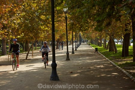 autuminal;autumn;autumn-colour;autumn-colours;autumnal;bicycle;bicycles;bike;bike-track;bike-tracks;bike-trail;bike-trails;bikes;capital-cities;capital-city;Capital-of-Chile;Chile;color;colors;colour;colours;cycle;cycle-track;cycle-tracks;cycle-trail;cycle-trails;cycler;cyclers;cycles;cycleway;cycleways;cyclist;cyclists;deciduous;excercise;excercising;fall;footpath;footpaths;gold;golden;lamp-post;lamp-posts;lamps;Latin-America;leaf;leaves;park;parks;Parque-Forestal;path;paths;pathway;pathways;people;person;push-bike;push-bikes;push_bike;push_bikes;pushbike;pushbikes;Santiago;Santiago-de-Chile;season;seasonal;seasons;South-America;Sth-America;The-Americas;tree;trees;yellow