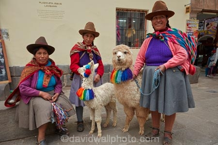 alpaca;alpacas;Andean;animal;Cusco;Cuzco;hat;hats;indigenous;indigenous-Peruvian;indigenous-Peruvians;Latin-America;Native-Peruvian;Native-Peruvians;people;person;Peru;Peruvian;Peruvians;Quechua;Quechua-People;Republic-of-Peru;South-America;Sth-America;stock;tourism;traditional-clothes;traditional-costume;traditional-costumes;traditional-dress;travel;UN-world-heritage-area;UN-world-heritage-site;UNESCO-World-Heritage-area;UNESCO-World-Heritage-Site;united-nations-world-heritage-area;united-nations-world-heritage-site;Vicugna-pacos;world-heritage;world-heritage-area;world-heritage-areas;World-Heritage-Park;World-Heritage-site;World-Heritage-Sites