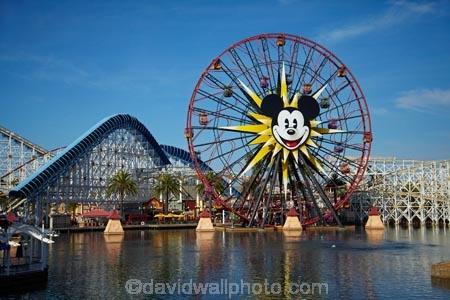 California Screamin Roller Coaster And Mickeys Fun Wheel