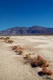 4217;alkalii-flat;america;american;barren;barreness;basin;bush;bushes;CA;california;clay-pan;clay-pans;death;Death-Valley;Death-Valley-N.P.;Death-Valley-National-Park;depression;desert;desert-plant;desert-plants;deserts;desolate;dry;dry-lake;dry-lake-bed;dry-lake-beds;dry-lakes;empty;endorheic-basin;endorheric;endorheric-basin;endorheric-basins;endorheric-lake;extreme;flat;geographic;geography;glare;glary;Great-Basin;International-Biosphere-Reserve;Inyo-County;lake;lake-bed;lake-beds;lakes;mojave;Mojave-Desert;national;national-park;National-parks;pan;Panamint-Range;Panamint-Valley;pans;park;playa;playas;sabkha;saline;salt;salt-crust;salt-flat;salt-flats;salt-lake;salt-lakes;salt-pan;salt-pans;salt_pan;salt_pans;saltpan;saltpans;salty;scrub;states;The-Great-Basin;U.S.A;United-States;United-States-of-America;usa;valley;vast;vlei;west-coast;West-United-States;West-US;West-USA;Western-United-States;Western-US;Western-USA;white;white-surface
