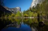 America;American;bluff;bluffs;brook;brooks;CA;California;calm;cliff;cliffs;creek;creeks;forest;forested;forests;granite-dome;Mirror-Lake;Mirror-Lake-Look-Trail;Mirror-Lake-Trail;Mount-Watkins;mountain;mountainous;mountains;Mt-Watkins;Mt.-Watkins;national-park;national-parks;placid;quiet;reflected;reflection;reflections;serene;Sierra-Nevada;Sierra-Nevada-foothills;smooth;States;still;stream;streams;Tenaya-Canyon;Tenaya-Creek;Tenaya-River;Tenaya-Stream;tranquil;tree;trees;U.S.A;UN-world-heritage-area;UN-world-heritage-site;UNESCO-World-Heritage-area;UNESCO-World-Heritage-Site;united-nations-world-heritage-area;united-nations-world-heritage-site;United-States;United-States-of-America;USA;valley;valleys;water;West-Coast;West-United-States;West-US;West-USA;Western-United-States;Western-US;Western-USA;world-heritage;world-heritage-area;world-heritage-areas;World-Heritage-Park;World-Heritage-site;World-Heritage-Sites;Yosemite;Yosemite-N.P.;Yosemite-Nat-Pk;Yosemite-National-Park;Yosemite-NP;Yosemite-Valley