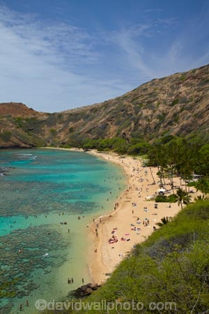 America;American;beach;beaches;coast;coastal;coastline;coastlines;coral-reef;coral-reefs;corals;dive-site;dive-sites;diving;ecosystem;environment;Hanauma;Hanauma-Bay;Hanauma-Bay-Beach;Hanauma-Bay-Nature-Preserve;Hanauma-Bay-Nature-Reserve;Hanauma-Bay-State-Park;Hanauma-Beach;Hanauma-Crater;Hawaii;Hawaiian-Islands;HI;Island-of-Oahu;leisure;marine;marine-environment;marine-life;marinelife;Oahu;Oahu;Oahu-Island;Ocean;oceanlife;Oceans;Outdoor;Outdoors;Outside;Pacific;people;person;Persons;Recreation;reef;reefs;sand;sandy;sea;sealife;seas;snorkelers;snorkeling;snorkellers;snorkelling;snorleler;snorleller;State-of-Hawaii;States;tourisim;tourism;tourist;tourists;tropical-beach;tropical-beaches;tropical-island;tropical-islands;tropical-reef;tropical-reefs;U.S.A;United-States;United-States-of-America;USA;visitor;volcanic-crater