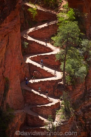 Hikers on Walters Wiggles zigzag, on West Rim Trail and